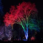 Fotoworkshop Langzeitbelichtung - Winterlichter in Mannheim